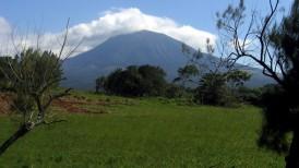 Guanacaste4